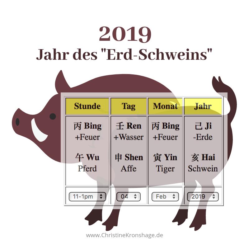 2019 Schwein mit Jahres-BaZi-Chart